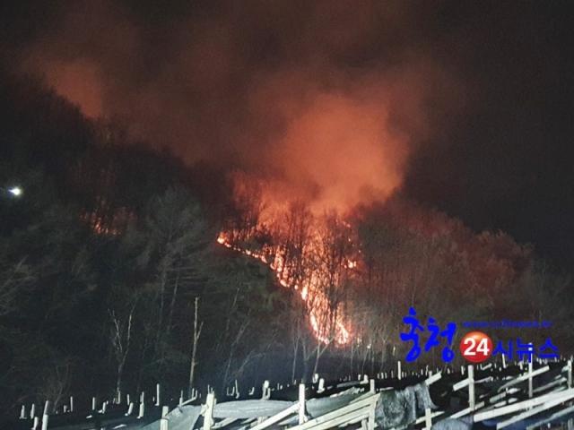 20210221 덕목리 산불화재 (3).jpg